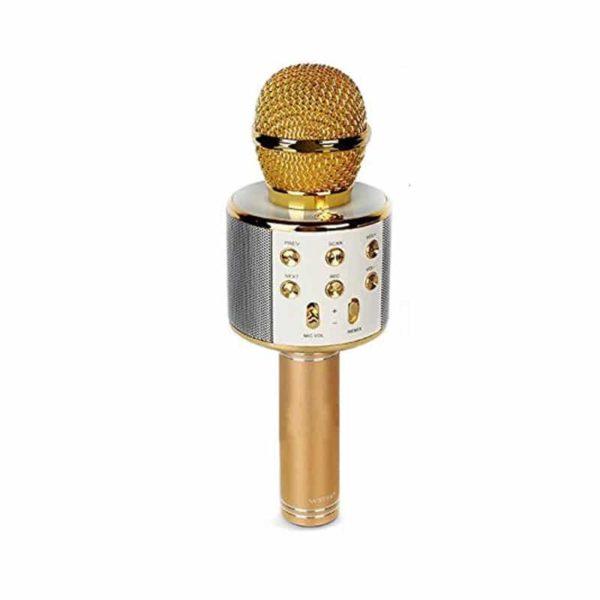 Microfon karaoke cu acumulator WS-858